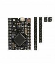 Плата MEGA2560 Pro Embed (Arduino-совместимая) USB CH340G RobotDyn