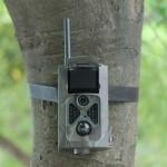Охотничьи камеры\Фотоловушки